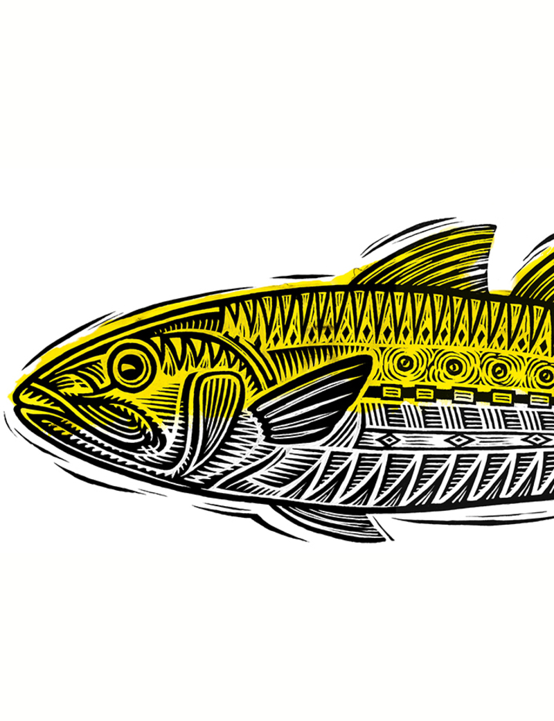 Y series sauvignon blanc fish?options=resize(height 1040.width 800