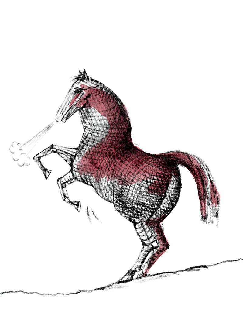 Y series shiraz viognier horse?options=resize(height 1040.width 800